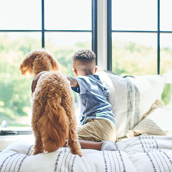 Young African-American boy sits with curly-haired dog looking out the window.